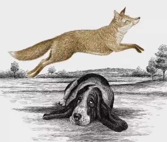 The quick brown fox jumps over lazy dog